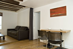 Ah Paris vacation apartment 146 - salon2