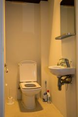 Ah Paris vacation apartment 157 - wc