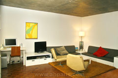 Ah Paris vacation apartment 226 - salon