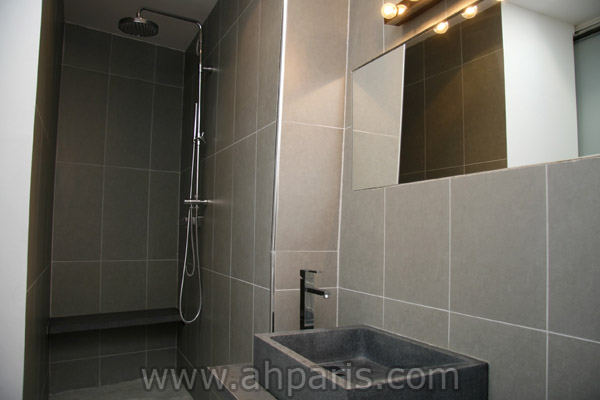 Ah Paris vacation apartment 317 - sdb
