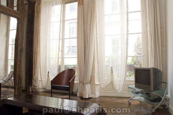 Ah Paris vacation apartment 318 - salon4