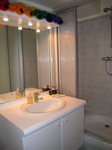 Ah Paris vacation apartment 335 - sdb