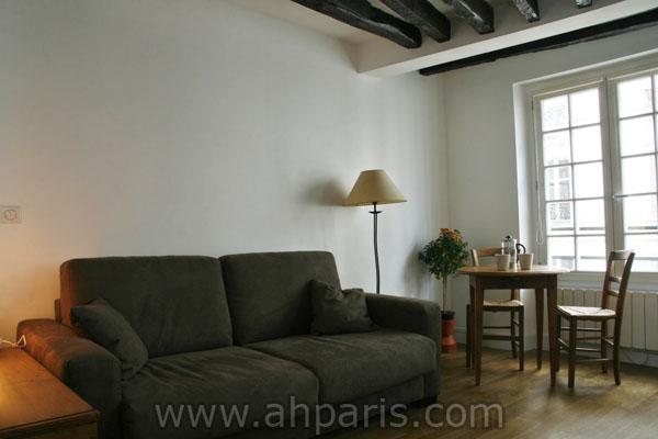 Ah Paris vacation apartment 347 - salon