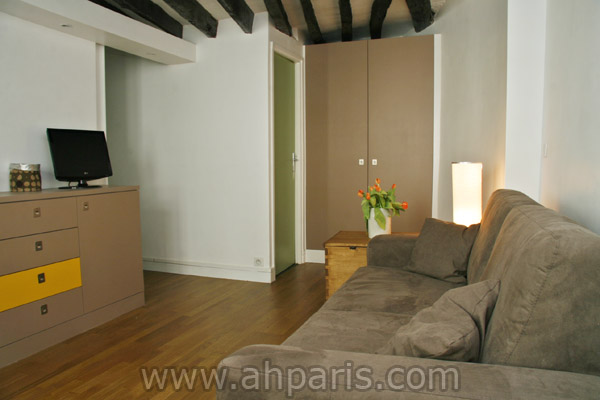 Ah Paris vacation apartment 347 - salon3
