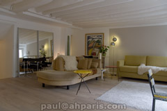 Ah Paris vacation apartment 357 - salon3
