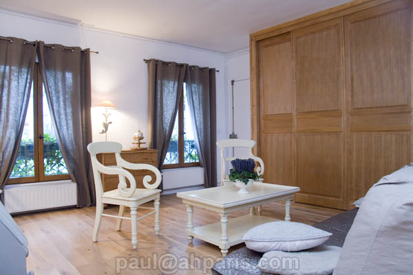 Ah Paris vacation apartment 371 - salon4