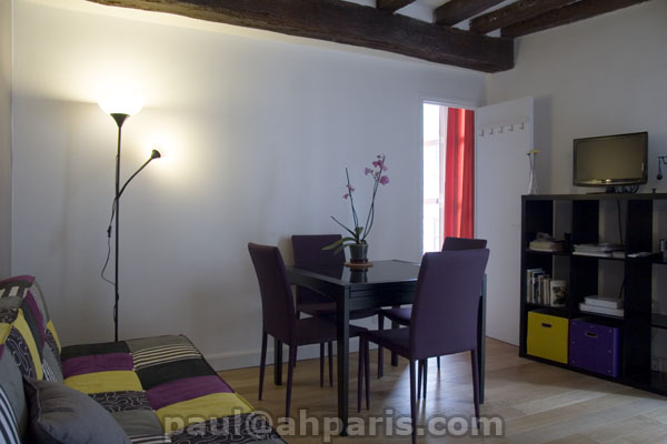 Ah Paris vacation apartment 390 - salon